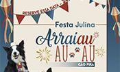 Festa Julina Arrai Au Au Au Cão Pira