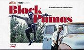 Show Black Pumas