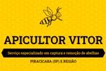 Mel Vic - Apicultor Vitor