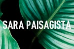 Sara Paisagista - Piracicaba